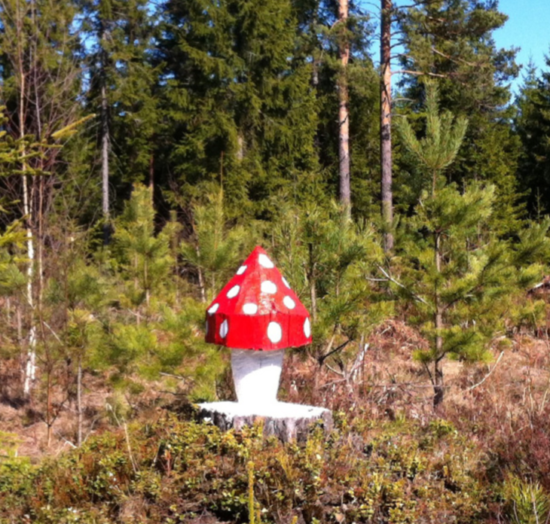 Conny Rosander skulpterar träd på rot. En modern skulptursvamp!